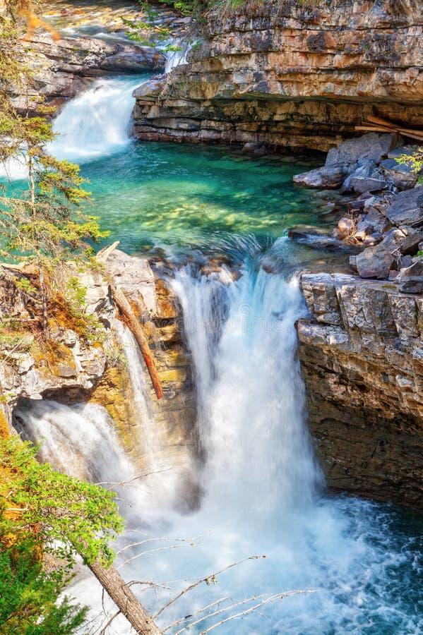 Водопад на каньоне Johnston в национальном парке Banff стоковое изображение rf