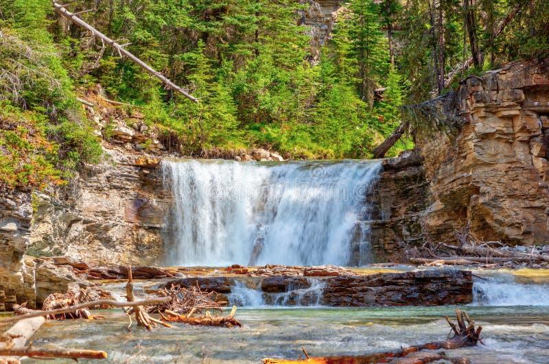 Водопад на каньоне Johnston в национальном парке Banff стоковое фото rf