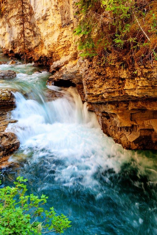 Водопад на каньоне Johnston пропуская вниз с заводи стоковая фотография rf