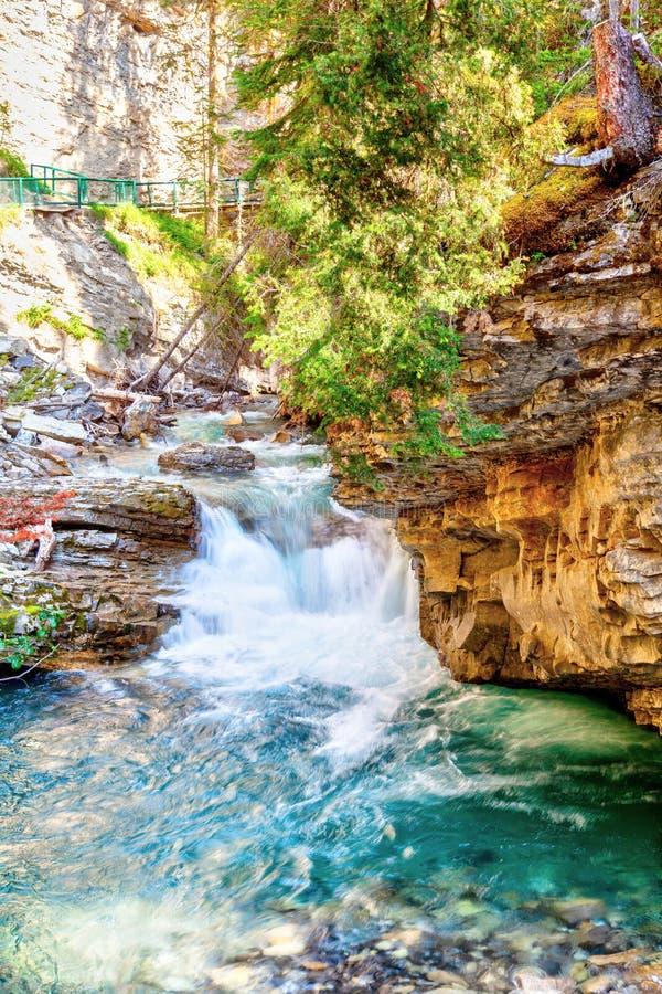 Водопад на каньоне Johnston пропуская вниз с заводи стоковые изображения rf