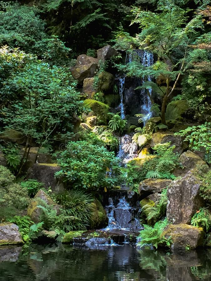 Водопад на японских садах стоковые изображения