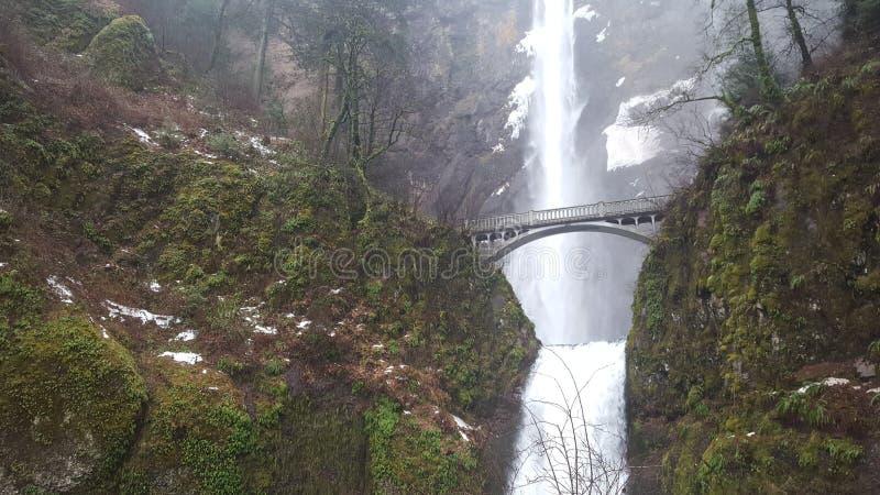 Водопад Орегона красивый стоковое изображение rf