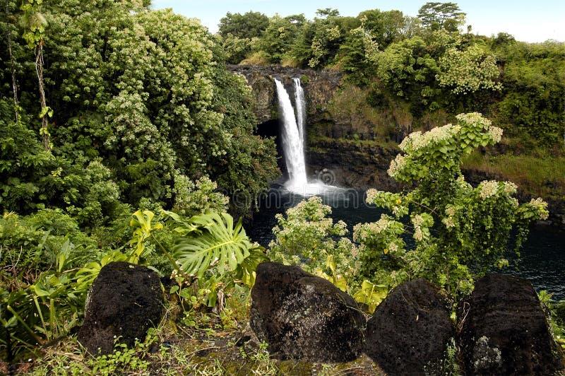 Download водопад острова стоковое изображение. изображение насчитывающей вода - 479947