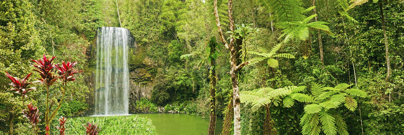 водопад панорамы millaa Австралии красивейший стоковое изображение