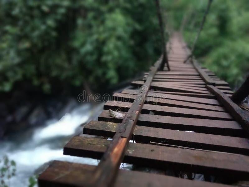 Водопад под деревянным мостом на лесе стоковая фотография rf