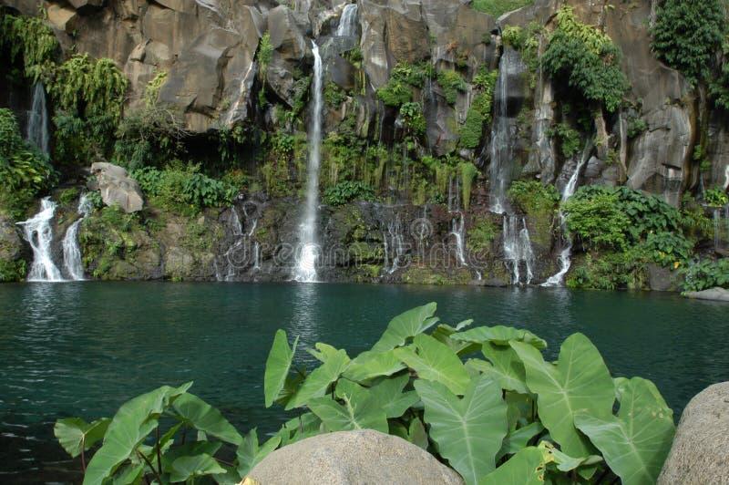 водопад святой реюньона les gilles cormorans стоковая фотография