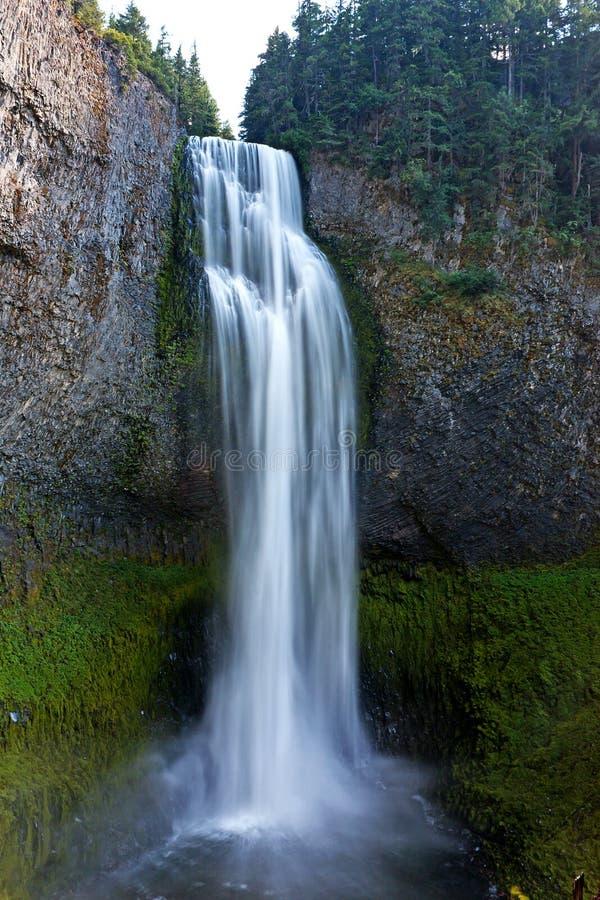 водопад соли Орегона заводи стоковое фото