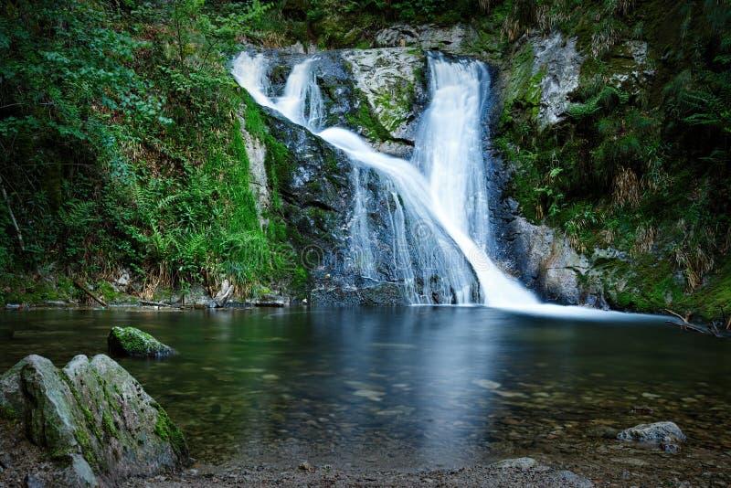 Водопад Allerheiligen, черный лес, Германия стоковое фото