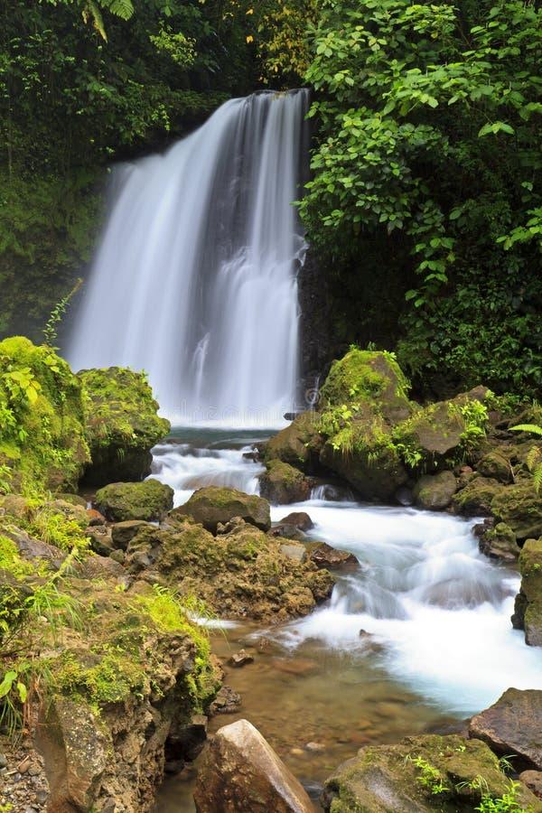 водопад arenal тропический стоковая фотография