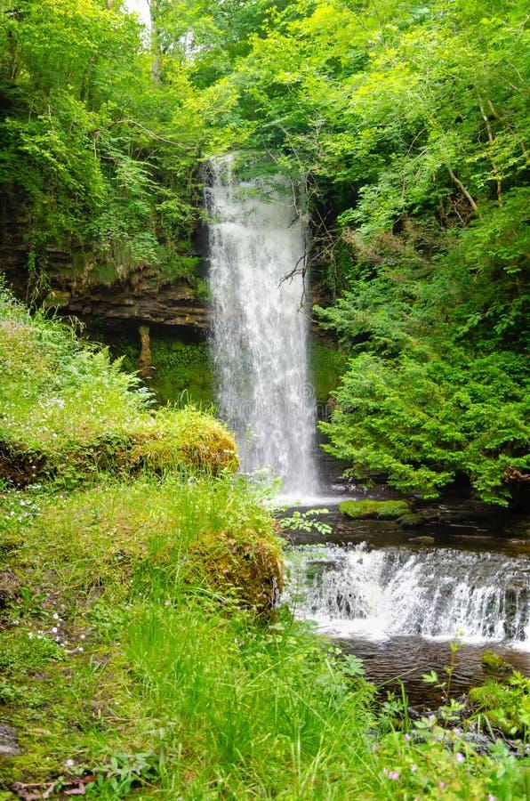Водопад Glencar, графство Leitrim, Ирландия стоковое фото