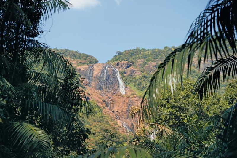 водопад goa стоковые изображения