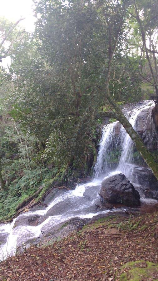 Водопад Misiones стоковые изображения rf