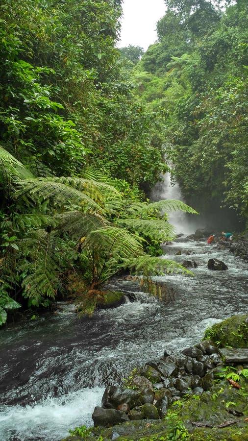 водопад raung telujuk стоковые фото