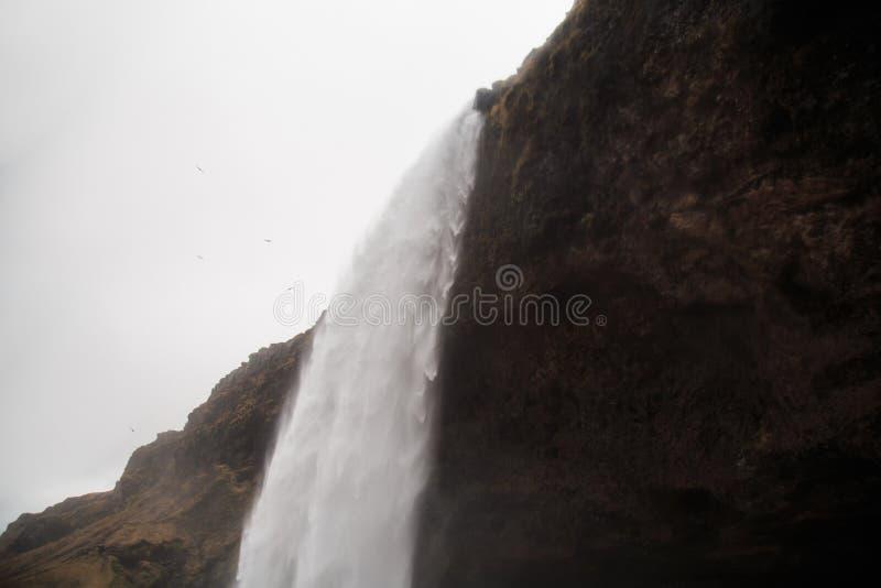 Водопад Seljalandsfoss в южной Исландии на пасмурный зимний день стоковое фото