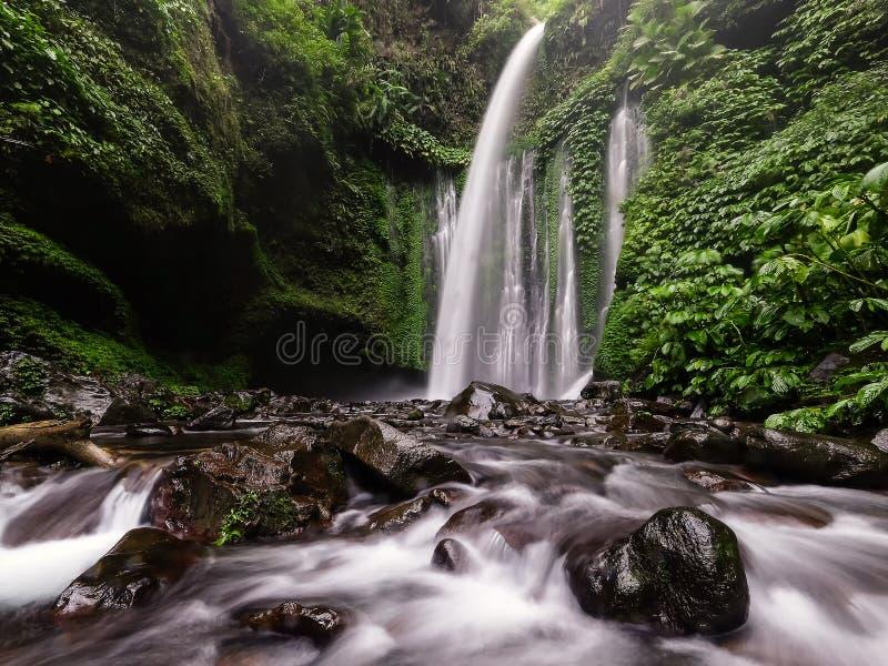 Водопад Senaru стоковое изображение rf
