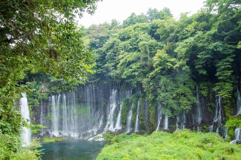 Водопад Shiraito около Mt Фудзи в префектуре Fujinomiya, Jap стоковые изображения rf