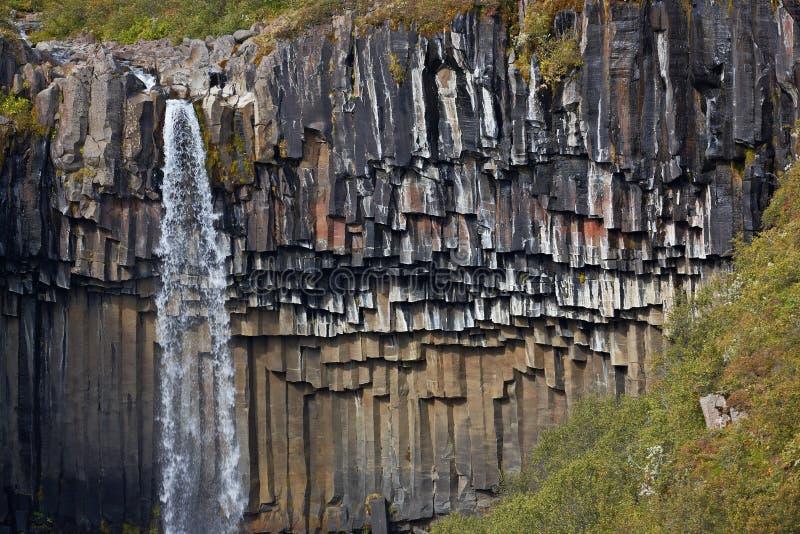 водопад svartifoss Исландии стоковые изображения rf