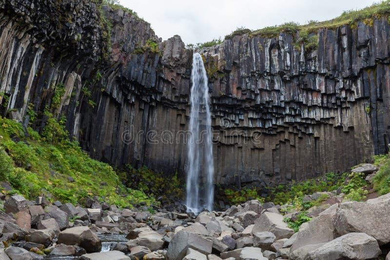 Водопад Svartifoss, национальный парк Skaftafell стоковое фото rf