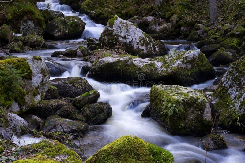 Водопад Triberg в черном лесе Германии стоковое фото