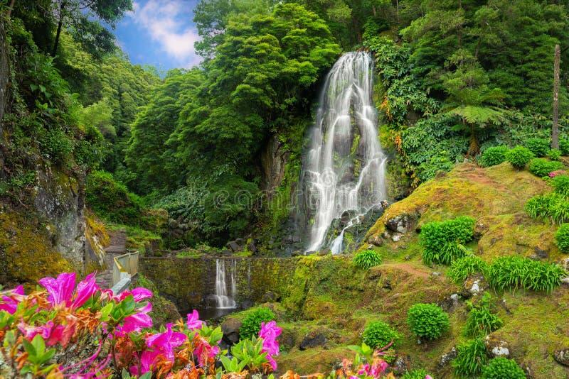 Водопад Veu da Noiva, остров Мигеля Sao, Азорские островы стоковое изображение rf