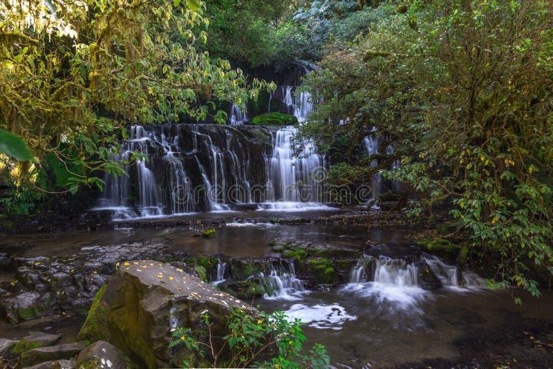 водопад zealand установки purakaunui красивейшего уровня пущи падений сочный multi новый Медленная выдержка затвора приглаживает  стоковые изображения