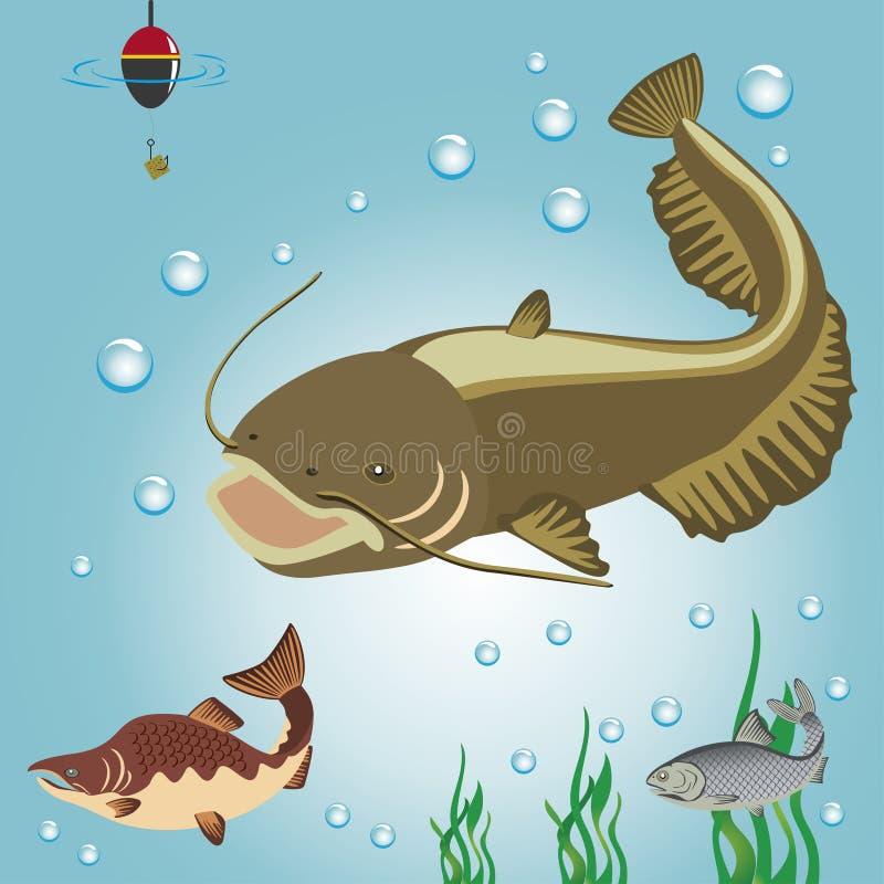 Водоросли, приманка, пузыри, сом, течение, рыба, рыбная ловля, поплавок, жабры, крюк, усик, река, море, кабель, подводный мир иллюстрация вектора