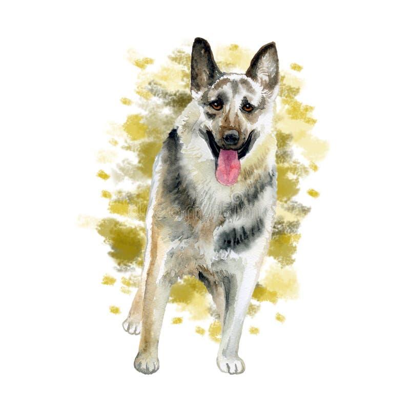 Водоцветный закрывающий портрет большой восточно-европейской породы собак, изолированных на абстрактном фоне Большая длинноволоса бесплатная иллюстрация