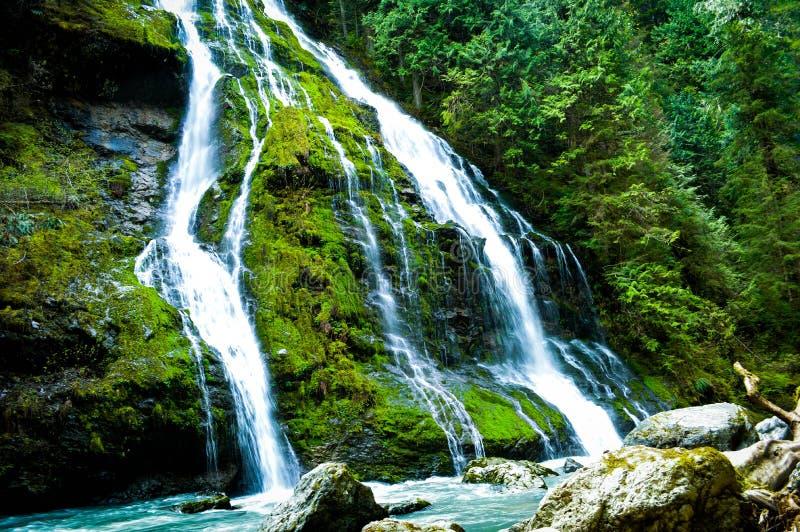 Воды жизни стоковые изображения rf