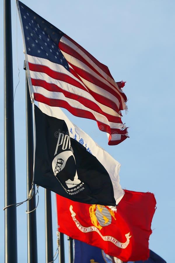Военные флаги Соединенных Штатов стоковое изображение rf