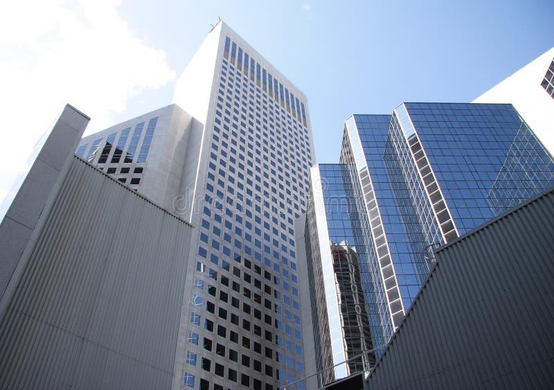 возвышаться calgary зданий стоковые фотографии rf