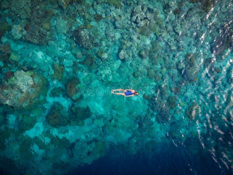 Воздушная верхняя часть вниз с людей на море кораллового рифа тропическом карибском, открытом море бирюзы Архипелаг Индонезии Wak стоковая фотография rf