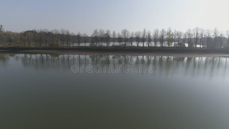 Воздушная минимальная съемка стиля туманных деревьев осени выравнивается на заднем плане озера в Литве, Европе стоковая фотография rf