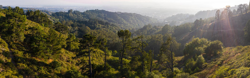 Воздушная панорама холмов в восточном заливе, северной калифорния стоковое фото