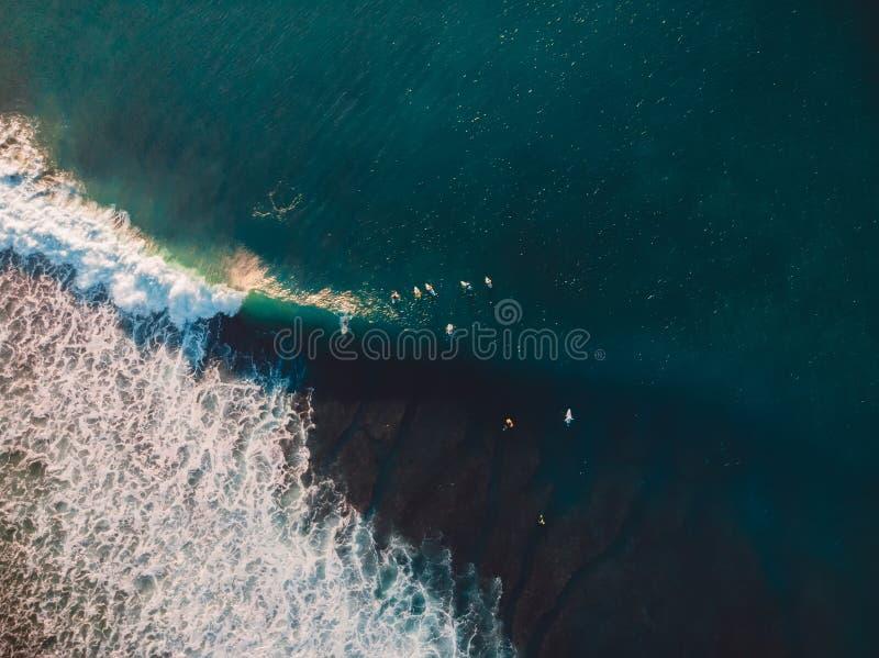 Воздушная стрельба занимаясь серфингом Серфинг в океане стоковые изображения rf
