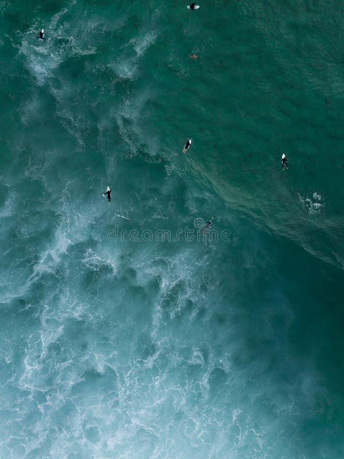 Воздушная съемка серферов плавая кладя на их доски в волнах моря ждать сильных для того чтобы прийти стоковые изображения rf