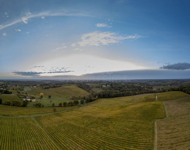 Воздушное видео в изумительном ландшафте виноградников стоковое изображение