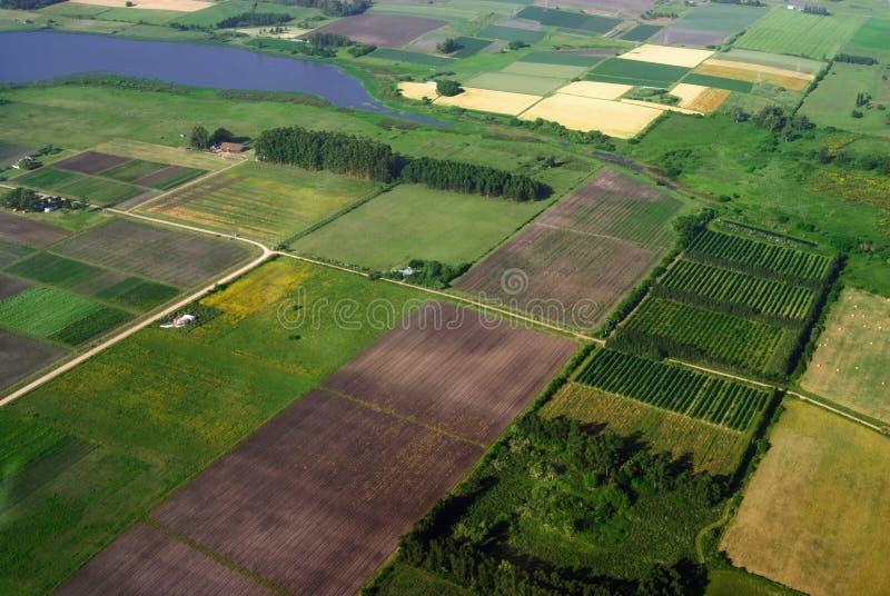 воздушное земледелие fields зеленый взгляд стоковые фотографии rf