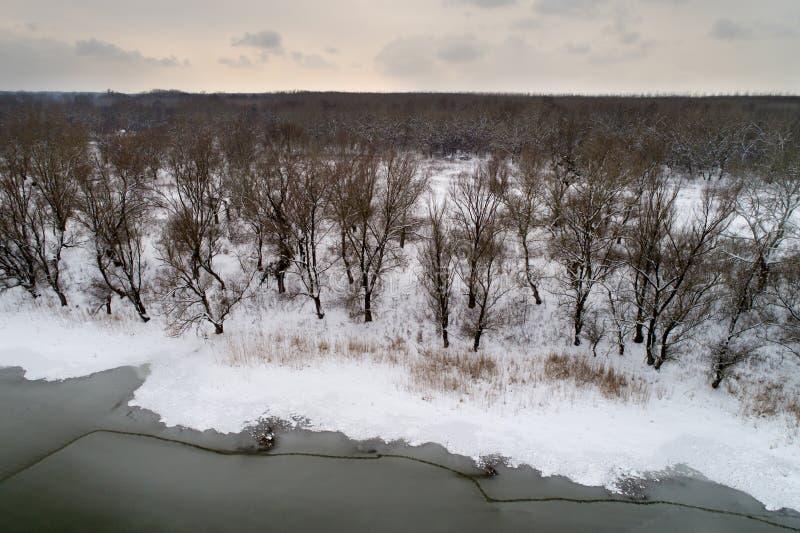 Воздушное изображение замороженного реки в лесе стоковое изображение rf