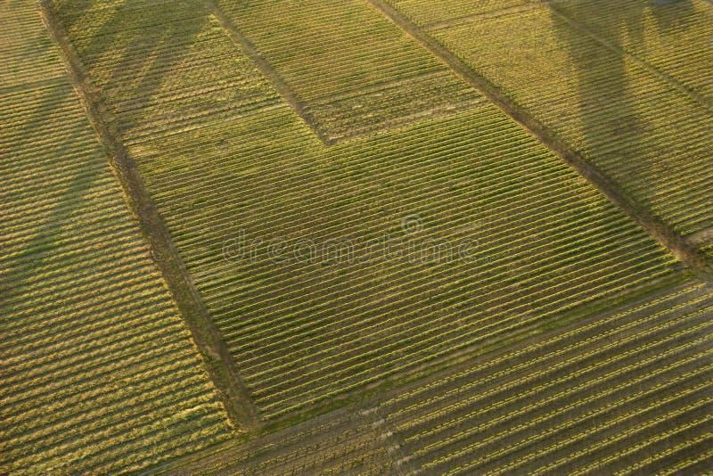 воздушные урожаи стоковые изображения rf