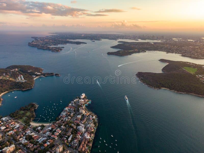 Воздушный взгляд вечера трутня пригорода мужественного, пригорода с видом на море Сиднея северного Сиднея стоковое фото rf