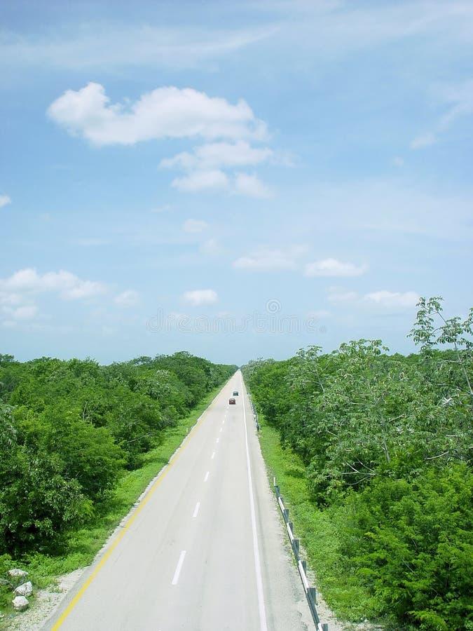 воздушный взгляд дороги Мексики джунглей америки центральный стоковая фотография rf