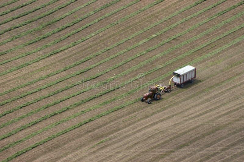воздушный взгляд трактора сена поля хуторянина молокозавода вырезывания стоковое изображение rf