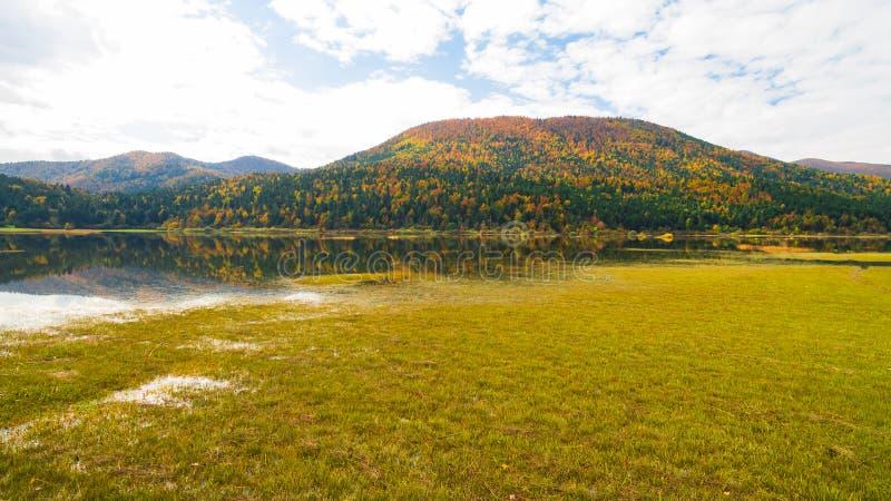 Воздушный взгляд трутня изумительных цветов осени на озере Озеро Cerknisko, Словения стоковые фото
