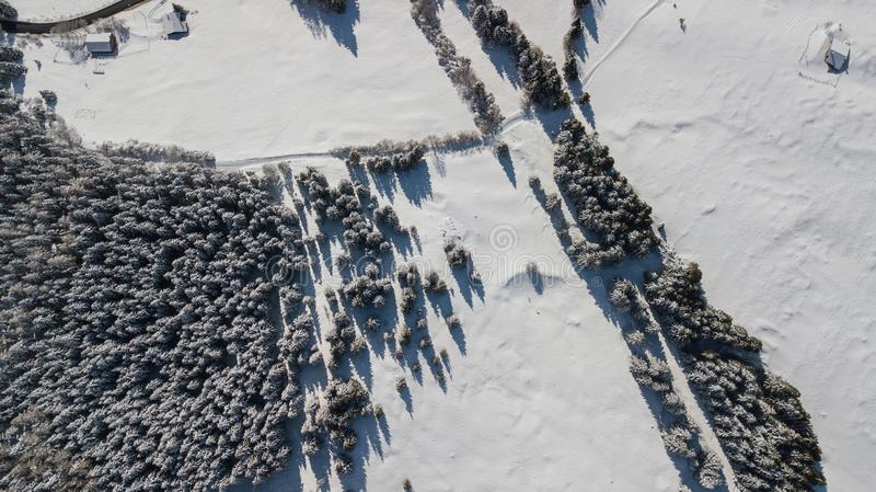 Воздушный взгляд трутня покрытых снег древесин после снежности Итальянка альп стоковое изображение rf