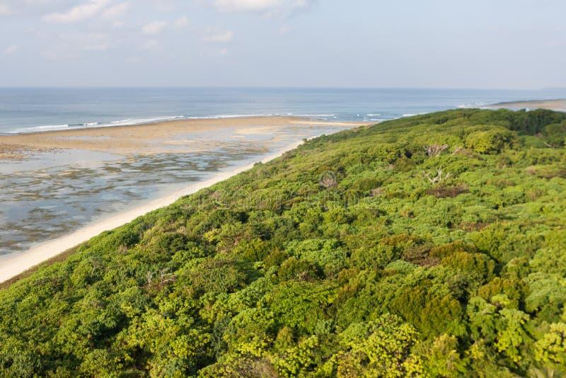 Воздушный ландшафт джунглей на меньшем Андаманском острове стоковое изображение rf