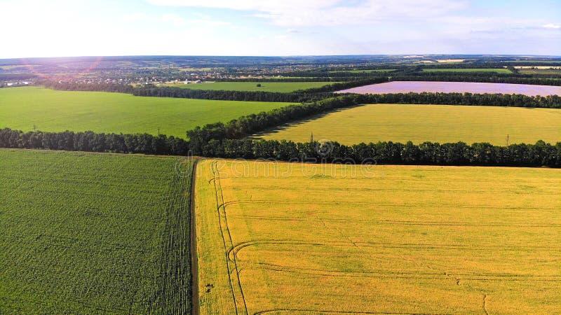 Воздушный ландшафт с полями стоковая фотография rf