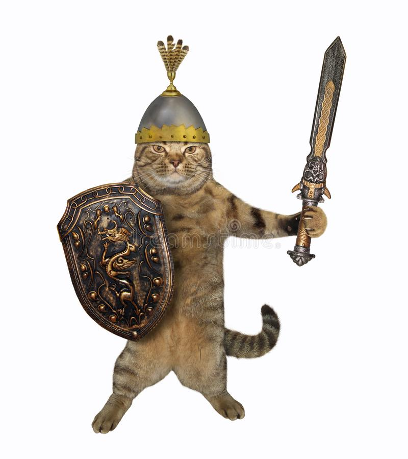 Воин кота с большой шпагой 3 стоковое изображение