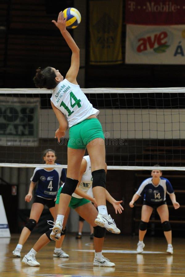 волейбол miskolc игры kaposvar стоковая фотография rf