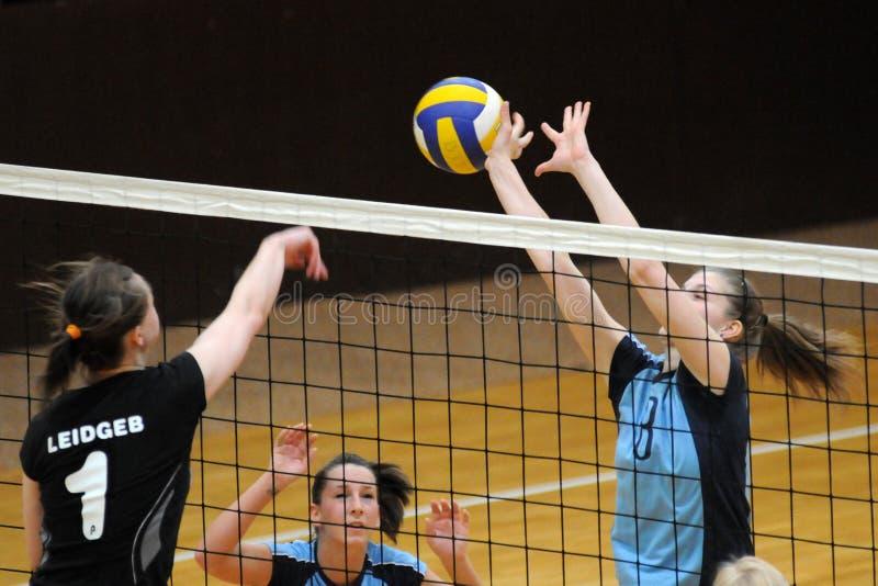 волейбол miskolc игры kaposvar стоковая фотография