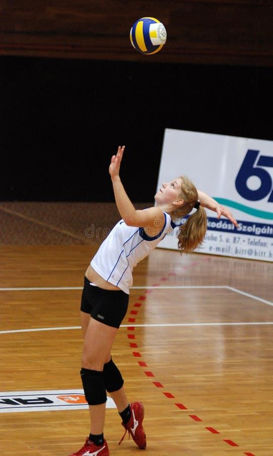 волейбол miskolc игры kaposvar стоковое изображение rf